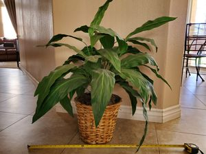 Large indoor fake plant for Sale in Fontana, CA