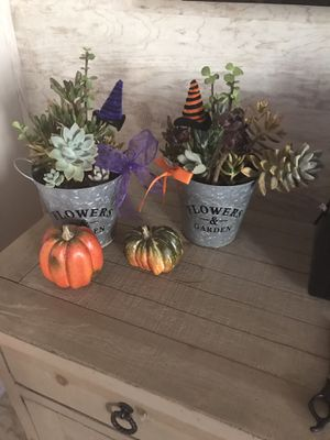 Halloween Planter Arrangement for Sale in Rancho Cucamonga, CA