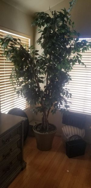 Fake plant 7' good condition for Sale in North Las Vegas, NV
