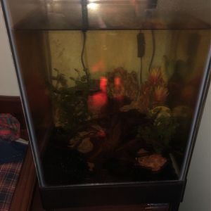 15 Gallon Column Fish Tank With Stand Decorations Heater Filter And Bubbler Will Trade For Dirt Bike Or Hunting Gear for Sale in Leesburg, VA