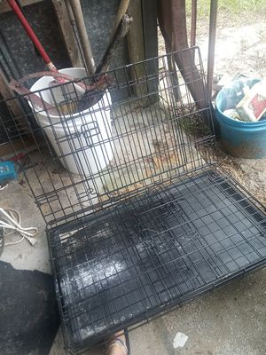 Medium dog crate for Sale in Lake Wales, FL