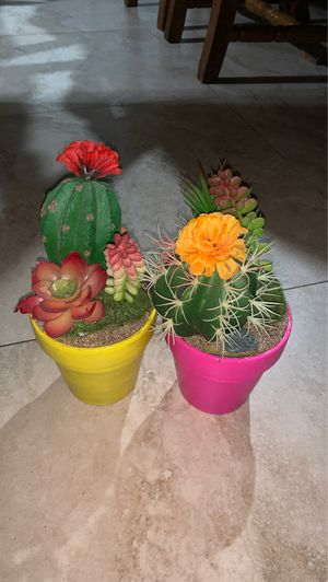 combo fake succulent plants for Sale in Miami, FL