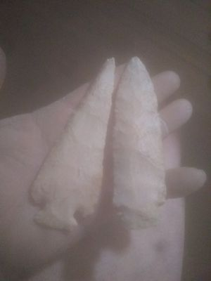 Athinic Arrowhead 300 for both or best offer for Sale in Quincy, IL