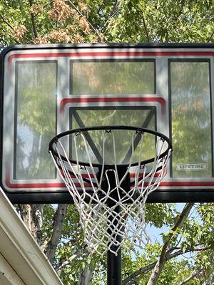 Lifetime basketball hoop for Sale in Thornton, CO
