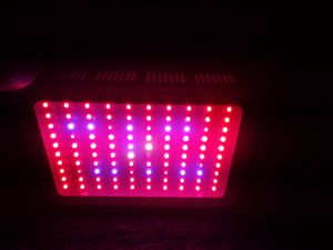 1000 watt LED grow light for Sale in Marion, IL