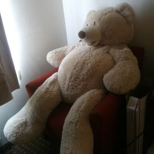 Adult Life size Teddy Bear for Sale in Denver, CO