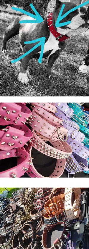Collars for Sale in Pomona, CA