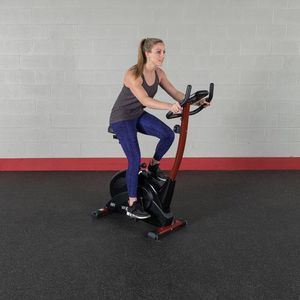 Stationary Bike for Sale in Fairplay, CO