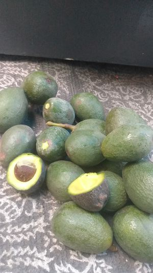 Aguacates for Sale in South Gate, CA