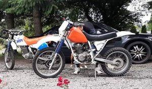 1986 xr200 for Sale in Everett, WA