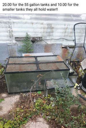 20.00 for the pair 55 gallon and 15 for the pair of 2 ,10 gallon aquariums they all hold water for Sale in Manito, IL