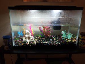10 gal fish tank for Sale in Dallas, TX