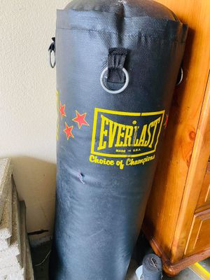 Everlast Punching Bag for Sale in Fresno, CA