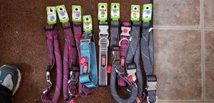 Dog collars for Sale in Lawrence, MA
