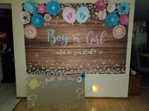 Gender reveal for Sale in Lisle, IL