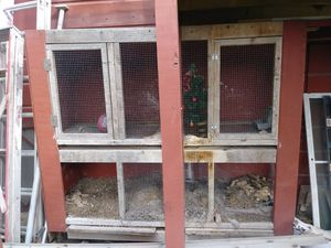 LARGE CAGE for Sale in Brownsville, TX