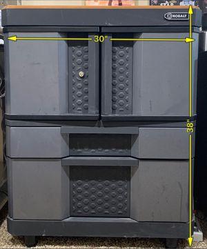 Kobalt 2 Door, 2 drawer cabinet #KB30220CMB garage or basement cabinet. for Sale in Columbus, OH