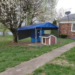10'x10' kennel with large dog house. for Sale in Paris, KY