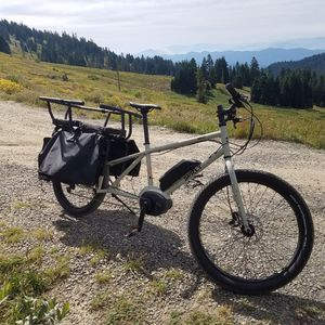 SURLY-BIG EASY - Longtail Electric Cargo Bike for Sale in Newport Coast, CA