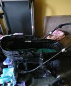Baby trend carriage stroller for Sale in Lexington, KY