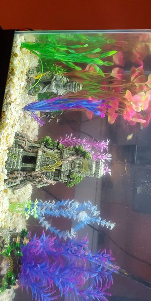 Fish tank and stand decoration for Sale in Chelsea, MA