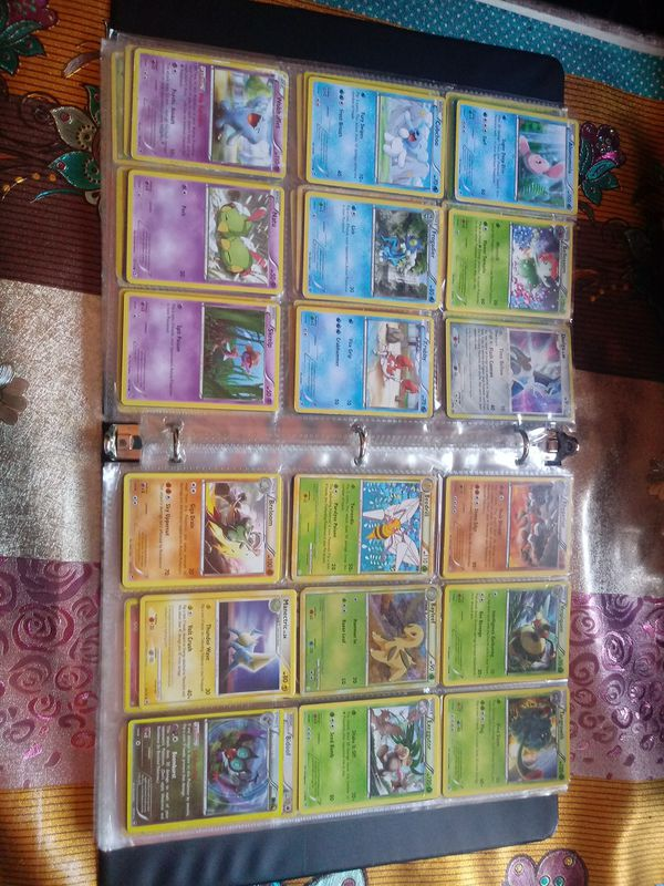 Pokemon card collection(All incase in a binder)
