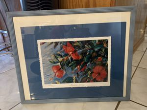 Photo glass framed Hawaiian Breeze. Great looking and great quality for Sale in Las Vegas, NV