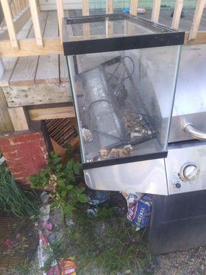 fish tank reptile take for Sale in Lewiston, ME