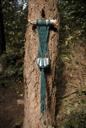 Forest Green Macrame Plant Hanger for Sale in Seattle, WA