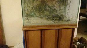 40 Gallon Fish Tank for Sale in Milan, IL