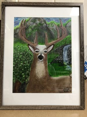Deer for Sale in Winston-Salem, NC