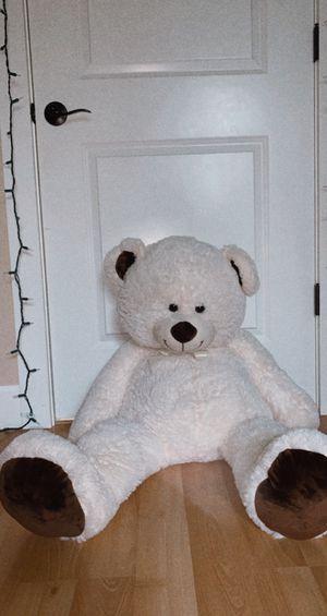 Medium size teddy bear for Sale in Hillsboro, OR