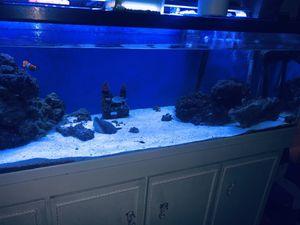 Fish tank for Sale in La Vergne, TN
