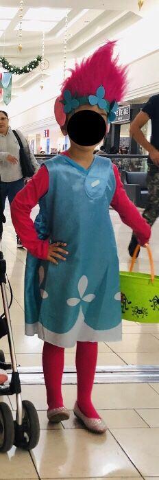 Trolls Poppy Dress and Wig costume
