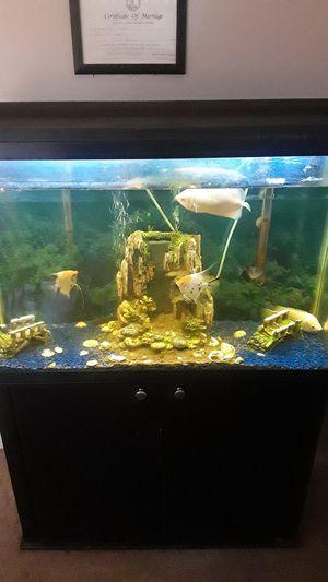 Fish tank & Samsung TV 60inch for Sale in Richmond, VA