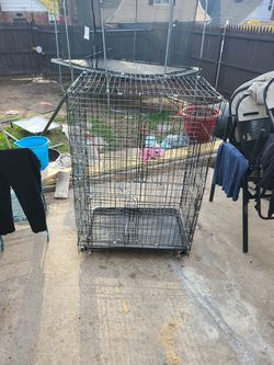 Small Animal Cage for Sale in Queens, NY