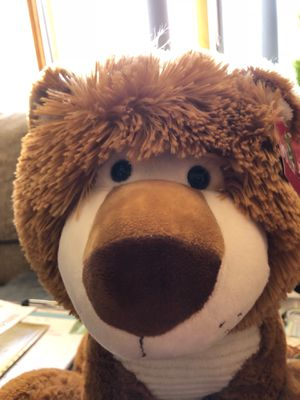 Really cute and really soft stuffed bear for kids for Sale in Hutchinson, KS