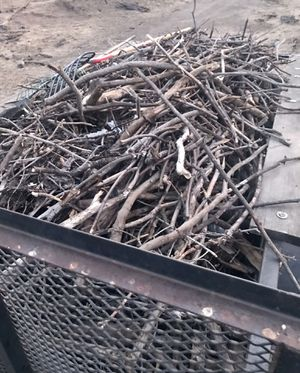 FREE FIREWOOD-YOU LOAD AND HAUL for Sale in Pleasanton, CA
