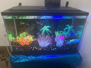 15 Gallon fish tank for Sale in Nashville, TN