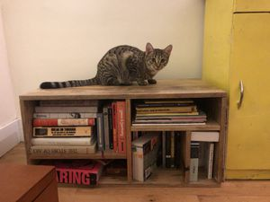 Wooden book shelf for Sale in Brooklyn, NY