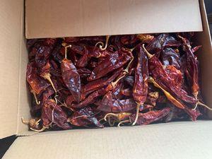 Chilacate for Sale in Phoenix, AZ