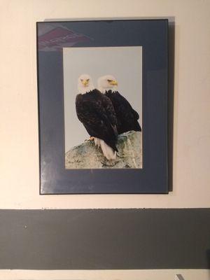 Eagle picture for Sale in Hoquiam, WA
