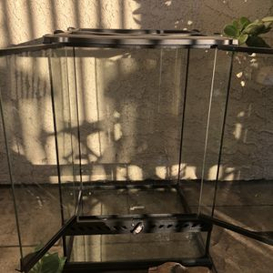 Frogs Terrarium for Sale in Long Beach, CA