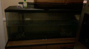 55 gallon fish tank for Sale in City of Orange, NJ