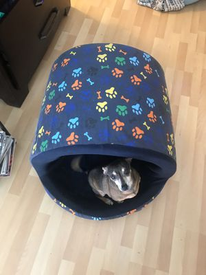 Dog bed house for Sale in Coral Gables, FL