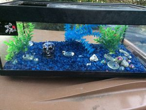 2.5 Gallon Aquarium/Fish Tank/Betta Tank!!! for Sale in Los Angeles, CA