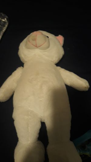 Cat from mr teddy bear inc for Sale in Beverly, MA