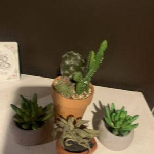 4 mini fake plants for Sale in Amityville, NY