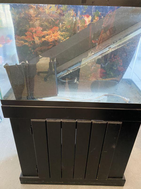 30 gallon aquarium/stand/accessories