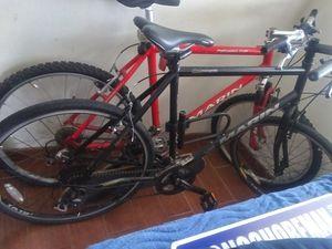 2 Marin Bikes 100 each for Sale in Pleasant Hill, CA